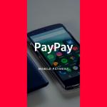 PayPayの「100億円還元キャンペーン」が祭り状態に!気になったのでその内容や条件を調べてみました